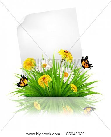 Sheet of paper with grass and spring flowers. Vector.