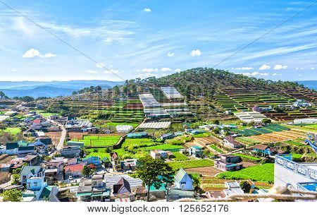 Beauty Da lat highland homes interspersed with vegetable gardens, planting flowers greenhouse, so far as hill with beautiful pine forests and idyllic in the highlands