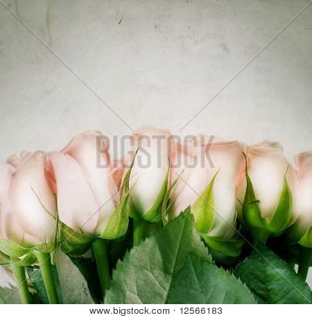 Beautiful Roses.Vintage styled