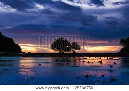 Silhouetted mangroves on rising tide after sunset in Phuket Thailand
