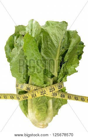 head of romaine lettuce and tape measure healthy diet concept