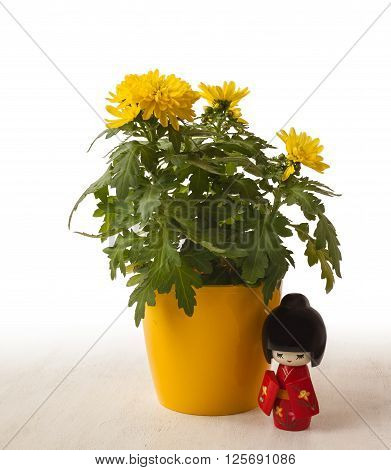 Concept of a Japanese holiday chrysanthemums ninth of the ninth lunar month of the traditional Japanese doll Kokeshi (mass production)