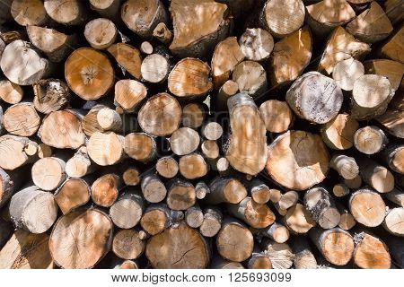 Firewood background texture in sunlight close up