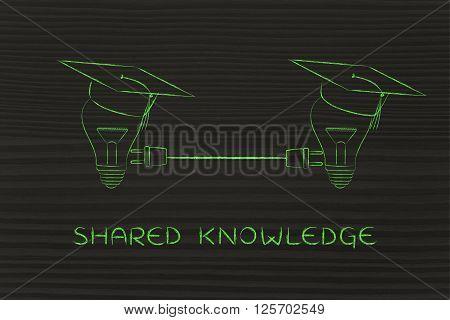 Lightbulbs With Graduation Cap With Plug, Shared Knowledge