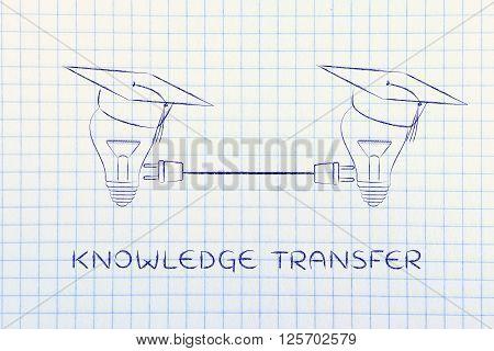 Lightbulbs With Graduation Cap With Plug, Knowledge Transfer