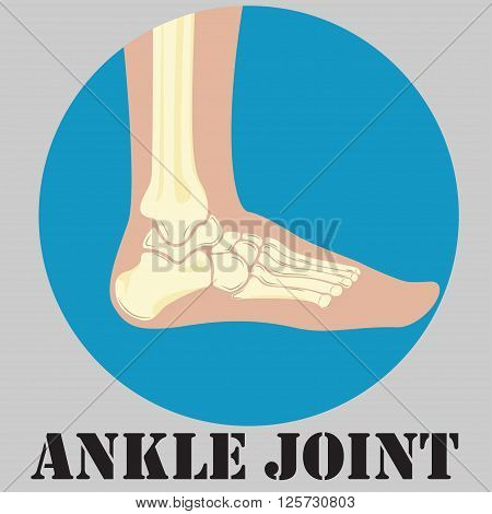 Human ankle joint emblem medicine clinic symbol design joints diagnostics center flat design logo vector