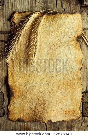 Weizen-Ohren auf dem alten Papier Blatt