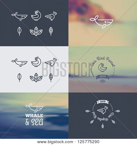 Logo with the Animals in the Style of Hipster. Trendy Retro Vintage Insignias Bundle. Vector art. Only free font were used.
