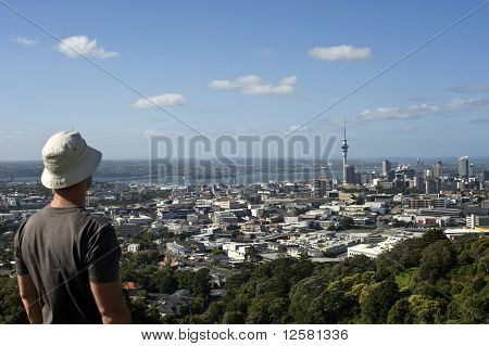 Landscape Of Auckland City