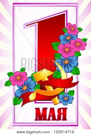 Postcard for Mayday. 1 may with branch of flowers and russian symbol of labor gold hammer and sickle with red ribbon on light purple background. Russian translation: 1 may. Vector illustration