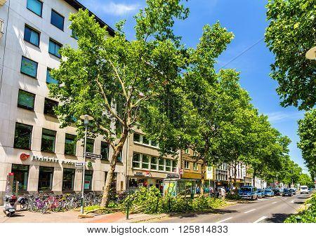 Dusseldorf, Germany - June 10, 2014: Broken trees in the city center of Dusseldorf. This storm killed 6 people in North Rhine-Westphalia