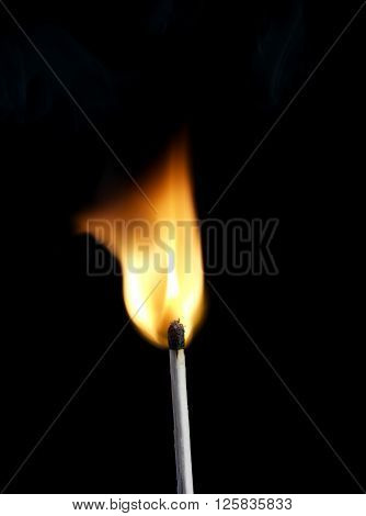 Macro shot of a flaming matchstick on a black background