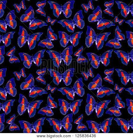 Butterflies Dark Pattern