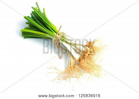 Green spring onions on a white background.