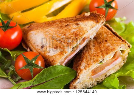 Sandwich with ham and tomatoes on a plate