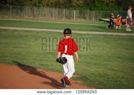 Cute little league baseball player walking on field from behind.