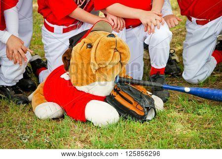 Stuffed animal bulldog in front of baseball team.
