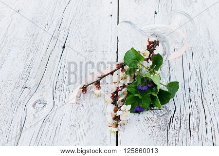 branch of blossoming apricot and violet flowers in a vase of glass overturned on a blurred white wooden background. Light toned photo
