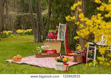Picnic In The Spring Park
