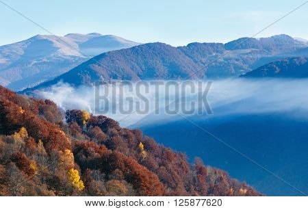 Autumn  Mountain Slope With Colorful Forest.