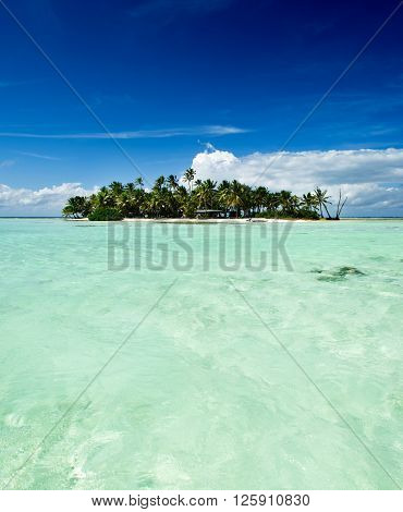 Tropical uninhabited or desert island with only a beach and palm trees in the famous Blue Lagoon inside Rangiroa atoll an island of the Bora Bora archipelago French Polynesia in the Pacific Ocean.