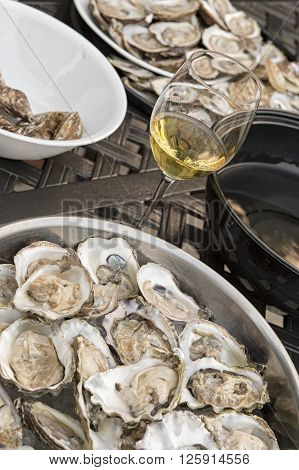 Wine And Oysters In A Plate Shucked