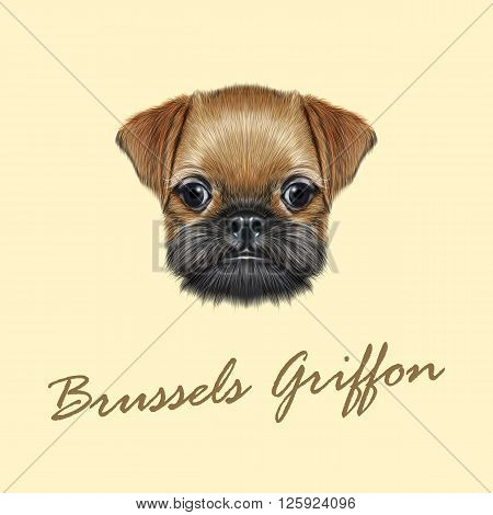 Cute bearded face of domestic dog on yellow background.