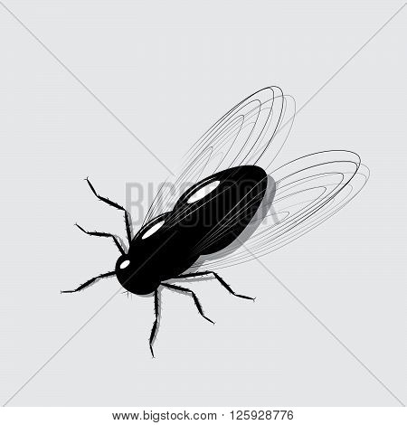 fly icon. A fly of black color on a gray background