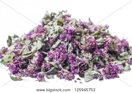 Dry Herb Origanum Vulgare
