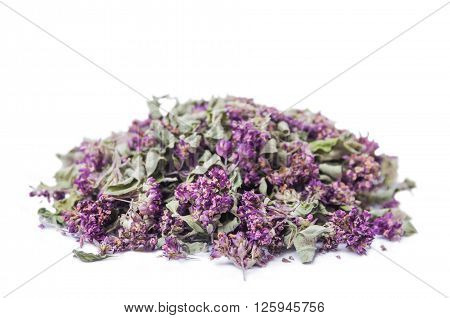 Dry herb Origanum vulgare isolated on white background