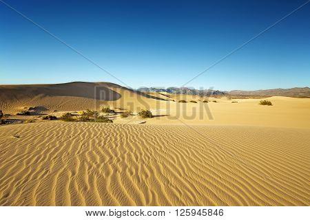 panoramic view of mesquite flat sand dunes