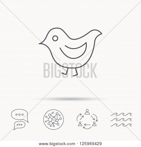 Bird icon. Chick with beak sign. Fowl with wings symbol. Global connect network, ocean wave and chat dialog icons. Teamwork symbol.