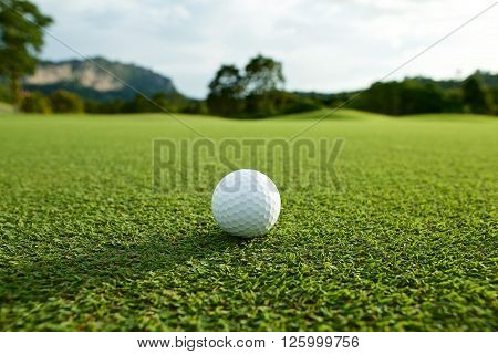 white golf ball on fairway with the green background in the country side