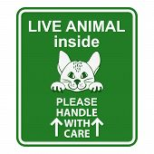 Sign for animal cage. Hand drawn sign Live animal for travelers with cat.  Live animal please handle with care sign. Special sign for care about shipping animals. Sign for animal transportation. Sticker with cute cat. poster