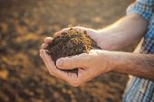 Farmer holding pile of arable soil in hands responsible and sustainable agricultural production close up with selective focus poster
