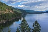 Christina Lake British Columbia Canada with trees in foreground on a spring day poster