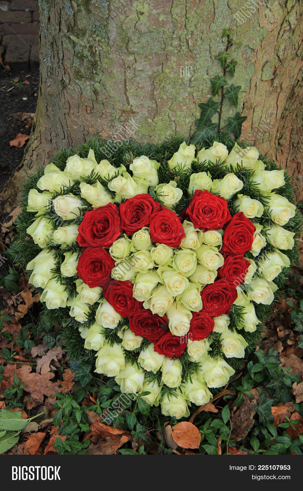 Red white heart shaped image photo free trial bigstock red and white heart shaped sympathy flowers or funeral flowers near a tree izmirmasajfo