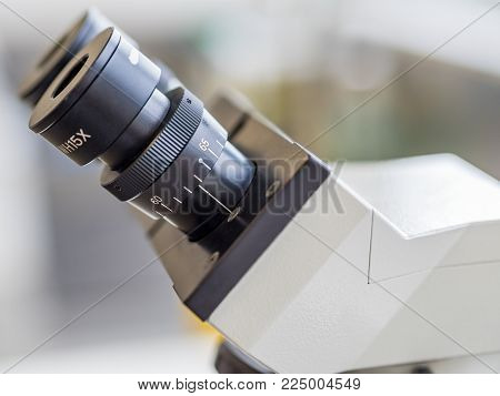 Eyepieces or oculars mounted on a movable head or turret of a compound light microscope. This instrument can be found in many laboratories and is useful both for research and teaching purposes.