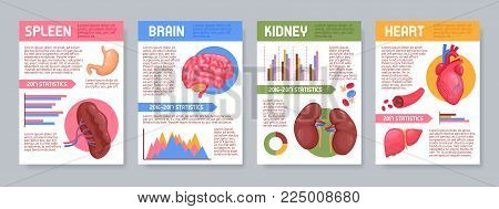 Set of posters with human internal organs including brain, kidneys, heart, spleen, infographic elements isolated vector illustration