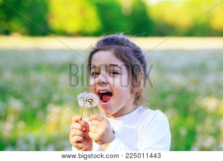 Beautiful little girl  laughing with dandelion flower in sunny spring park. Happy cute kid having fun outdoors at sunset.