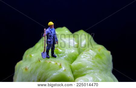 Figure worker on exotic fruit. Tropical fruit rough surface. Garden worker figurine on rough terrain. Digging ditch concept photo. Road worker job scene macro photo. Worker in helmet with shovel model
