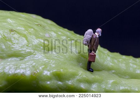 Traveller figure on tropical fruit. Senior traveler figurine on rough exotic vegetable. Senior man healthy diet concept. Active lifestyle in elderly age. Aged backpacker on asian vegetable chayote