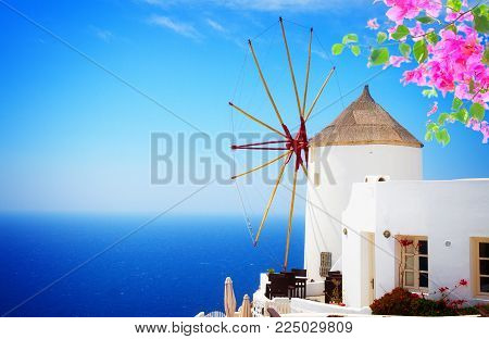windmill of Oia at sunny day close up, Santorini with flowers