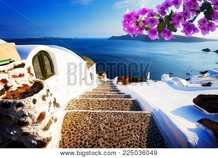 steep stone steps to the deep blue sea, beautiful details of Santorini island, Greece with flowers