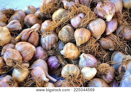 Small Garlic Bulbs For Sale At A Local Market