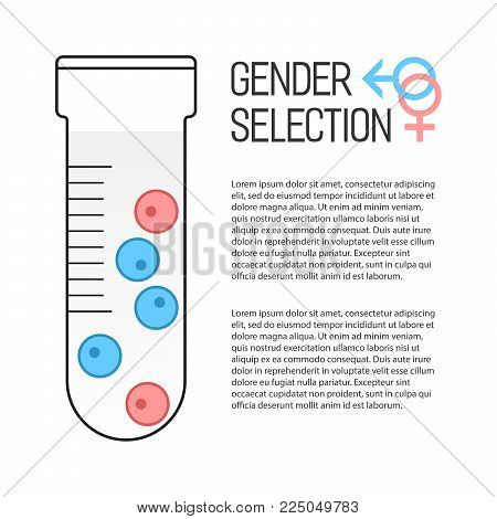 Gender selection poster. In vitro fertilization. Selection of sex. Vector illustration.