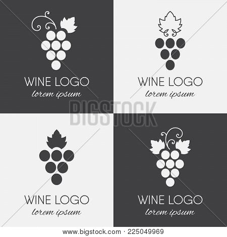 Set of grapes logo. Wine or vine logotype icon. Brand design element for organic wine, wine list, menu, liquor store, selling alcohol, wine company. Vector illustration.