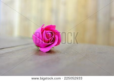 Close up a single pink rose on the old wooden table with blur wood wall background for Valentine's Day concept