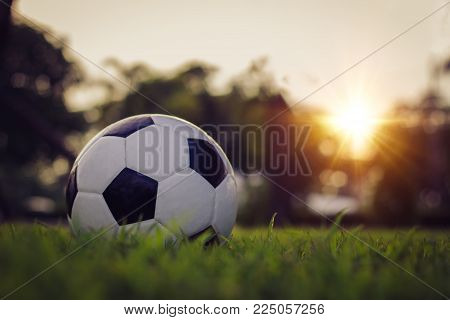 Traditional soccer ball on soccer field / soccer ball on the grass