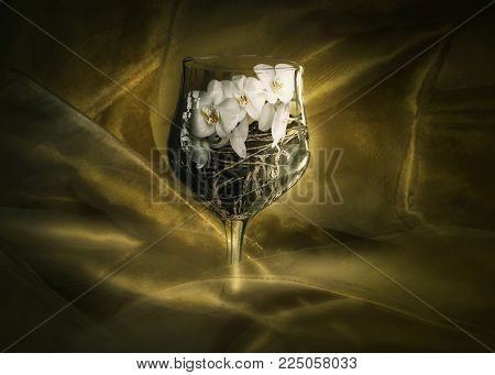 Conceptual art, Orchids and plant roots with soil in a large wine Goblet with gold silk background